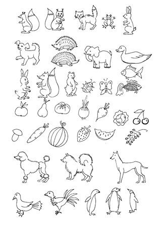 wild strawberry: set hand drawn animals. Set of object