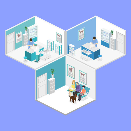 Flat 3D illustration Isometric interior of veterinary clinic. The veterinarian treats the pet