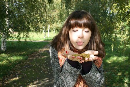 The girl blows on the yellow leaves laying at it in palms. Stock Photo - 4144276