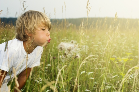 making face: Beautiful child blowing away dandelion flower Stock Photo