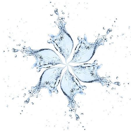 tomando agua: flor hecha de salpicaduras de agua