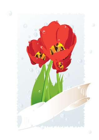 place for your text: Vector illustration of red tulips on a gently background with a ribbon for congratulating on a holiday. Place for your text. Illustration