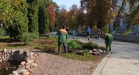 Kiev. Ukraine. October 01, 2019 Scene in the Shevchenko park. Carrying out landscaping of the park by Zelenstroy workers. People walking in the park alley. Sunny autumn morning