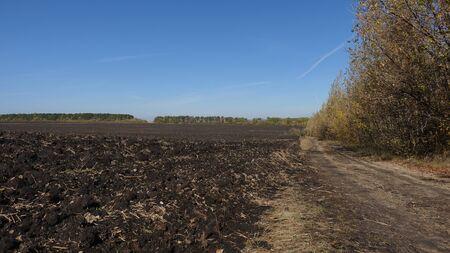 RoDirt road along the arable land on an autumn dayad along the arable land on an autumn day