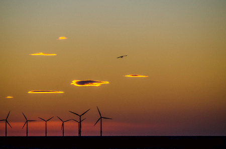 Sunset behind offshore windfarm.