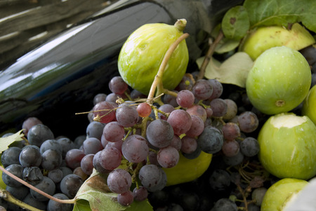SEASONAL BASKET WITH ITALIAN RED WINE BOTTLE, RED GRAPES, APPLES, FIGS AND GREEN LEAVES