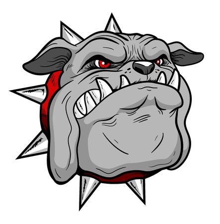 Bulldog Head Stock Photo - 16387015