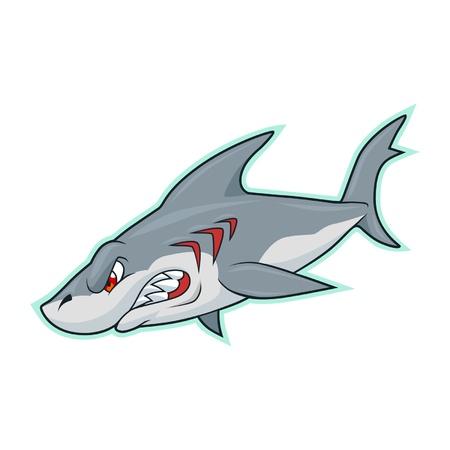 aggressive: shark