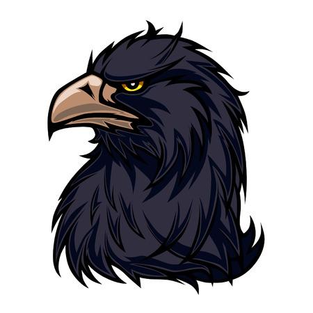 genteel: Black eagle Illustration