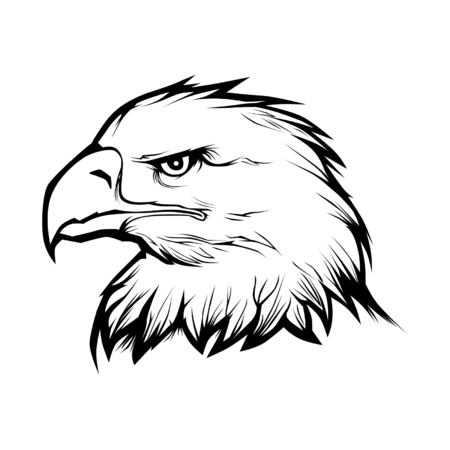 genteel: Eagle head Illustration