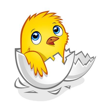 Cartoon amarillo pollo recién nacido en la cáscara del huevo roto Ilustración de vector