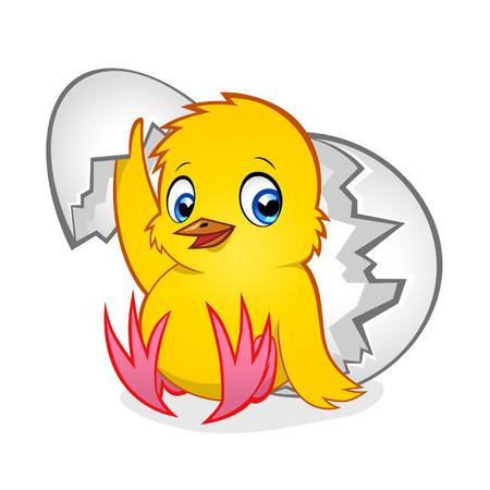 Cartoon yellow newborn chicken in the broken egg shell