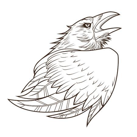 Raven portrait Vector
