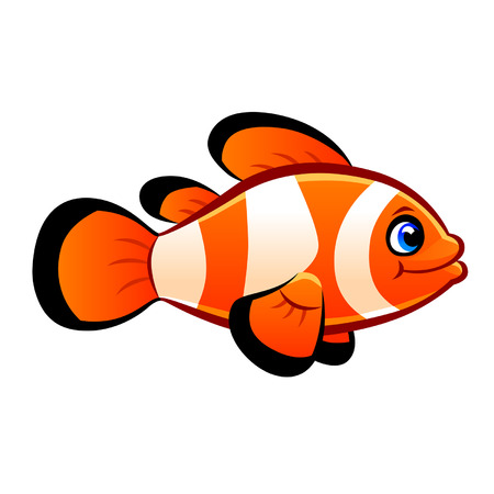 clownfish Illustration