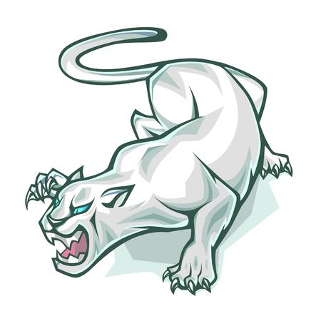 cougar: White panther Illustration