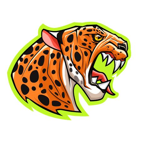 leopard head: Leopard head Illustration