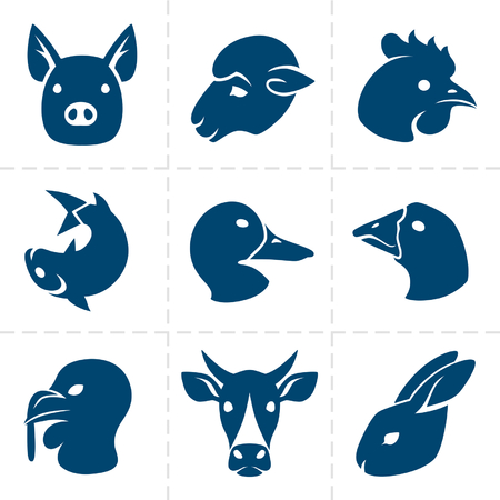 raw chicken: meats icons