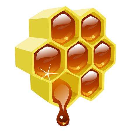 apiculture: Honey