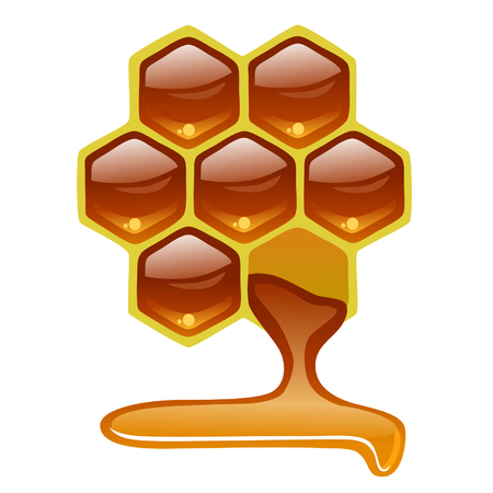 apiculture: honeycomb with honey