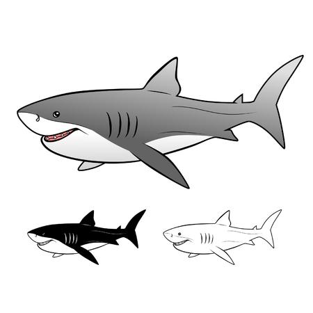 on white: White shark