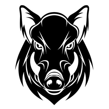 Wildschwein: Wildschwein Kopf Illustration