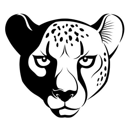 Cheetah face Illustration