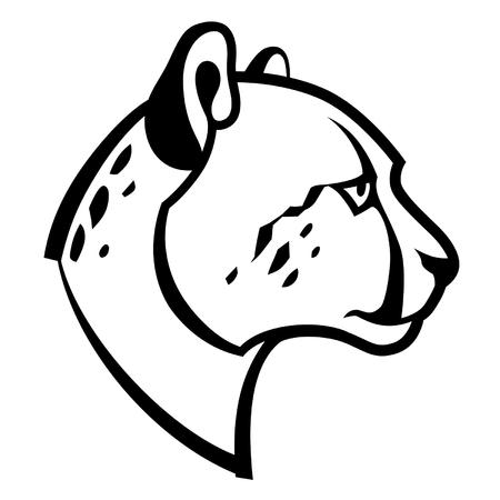 cheetah head Ilustrace