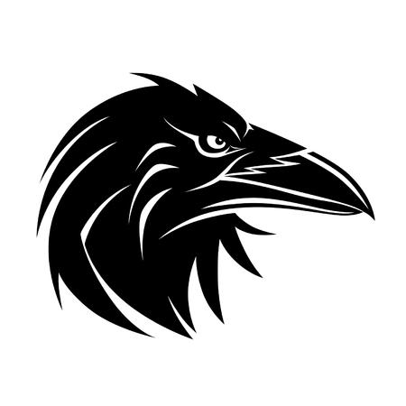 raven: Raven portrait