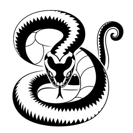 black snake: Viper snake