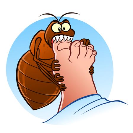bedbug: Bedbug bites