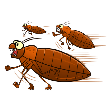 Escaping bedbugs