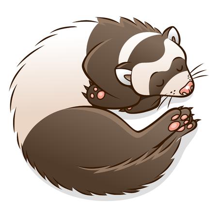Cute cartoon sleeping ferret.