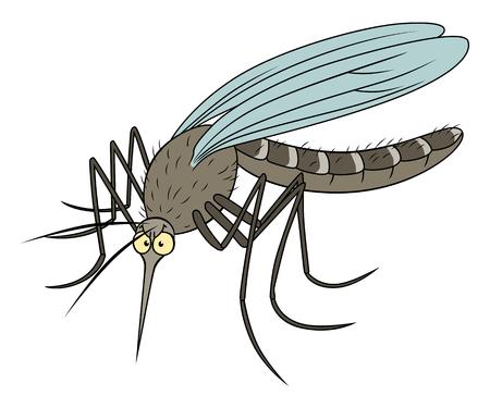 gnat: Funny cartoon realistic mosquito.