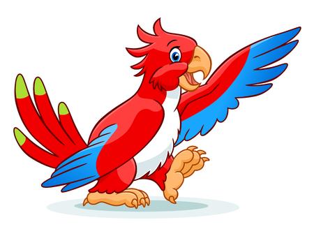 cute: Cute parrot