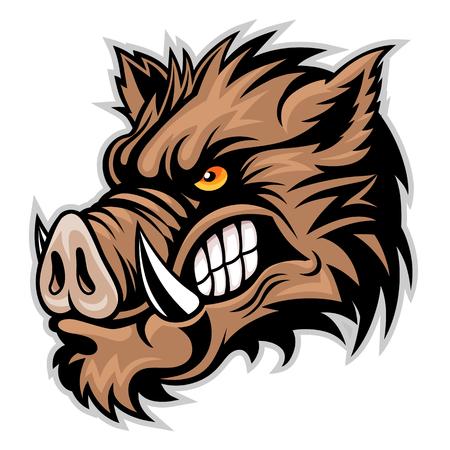 Wild boar head