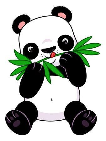 wild asia: Panda eats bamboo