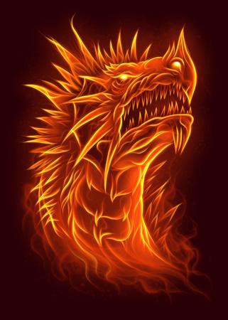 Testa di fuoco del drago Archivio Fotografico - 67109477