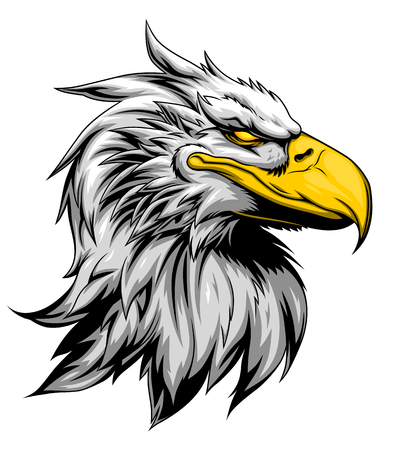eagle: Strong eagle head Illustration