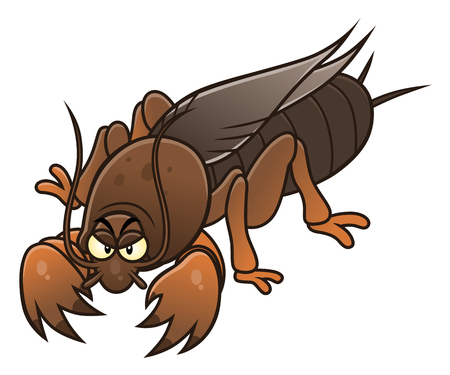 Cartoon mole cricket pest. Cartoon pest series.