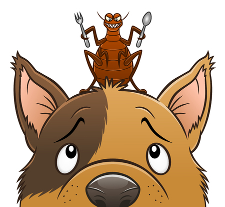 Flea going to eat the dog Illustration