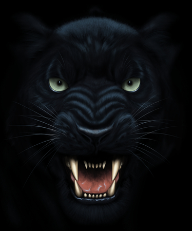 暗闇の中で怒っているパンサーの顔
