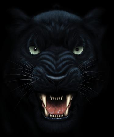 Gniewna pantera twarz w ciemności Zdjęcie Seryjne