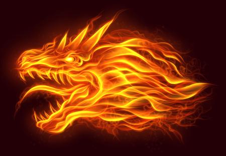 ドラゴンの火の頭 写真素材