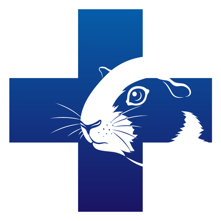 Guinea pig veterinary icon