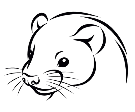 Line drawing of a ferret head simple