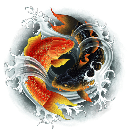 Two Koi red and black Imagens