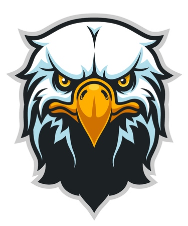 Vector illustration of bald eagle head.