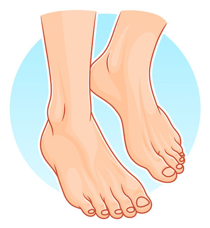 Human feet illustration.