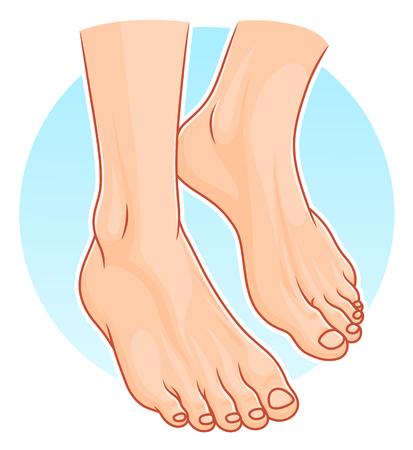 Menselijke voeten illustratie. Stock Illustratie
