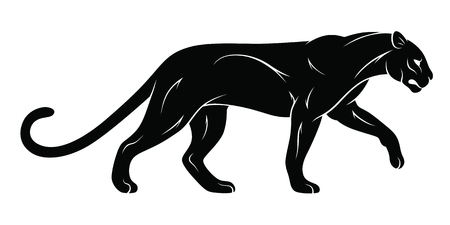 Walking panther vector illustration